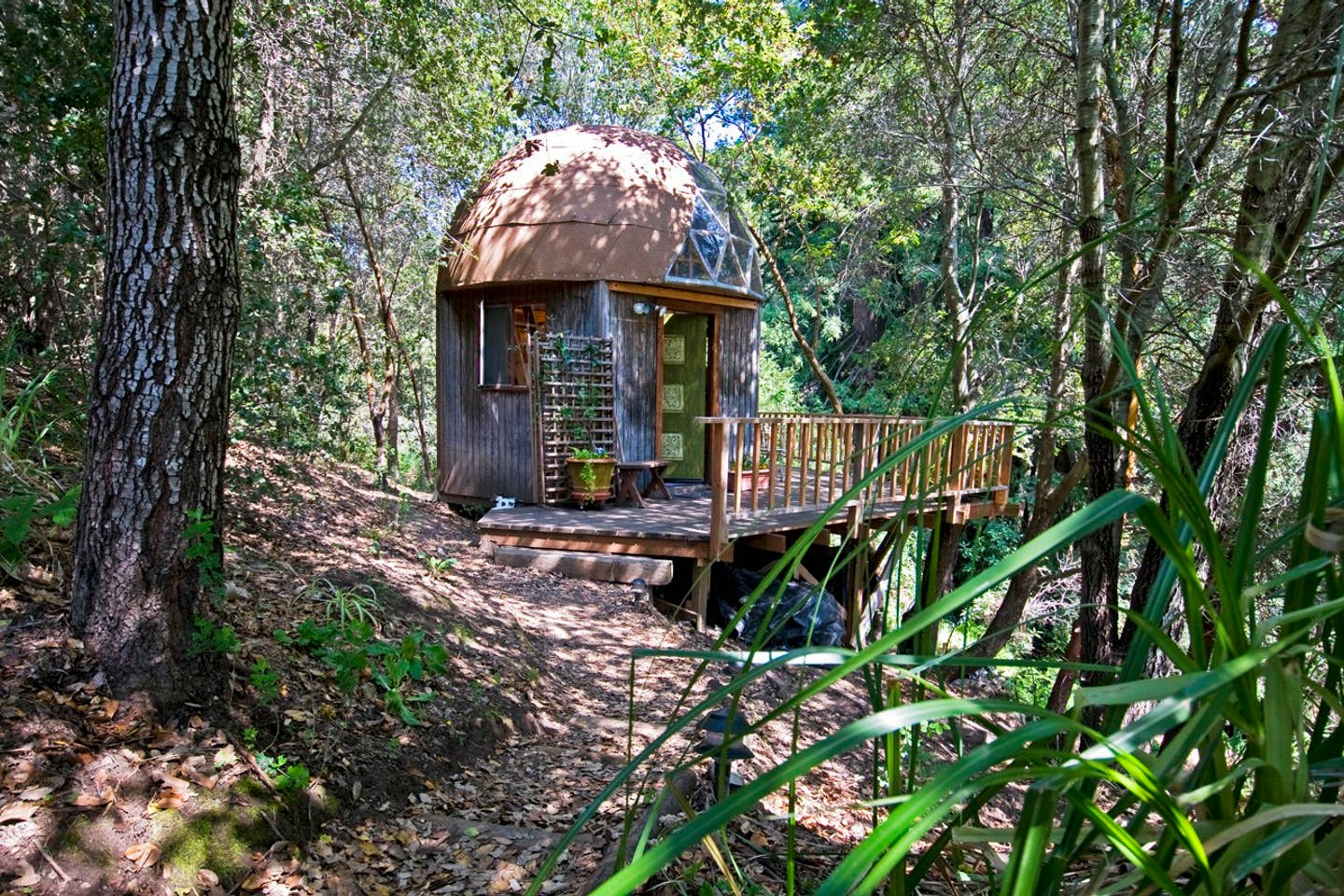 Outside View of mushroom dome cabin